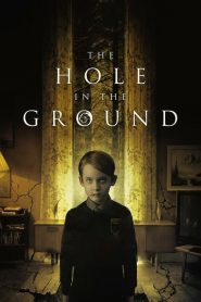 El Bosque Maldito / The Hole in the Ground (2019)