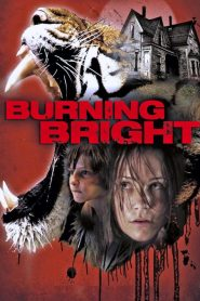 Atrapada / Burning Bright (2012)